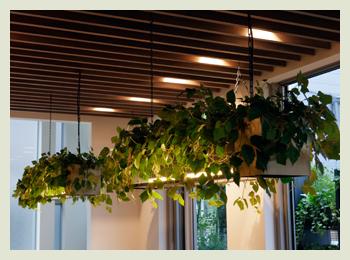 木のルーバー天井