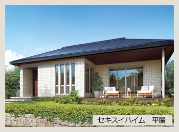 太陽光を搭載の平屋