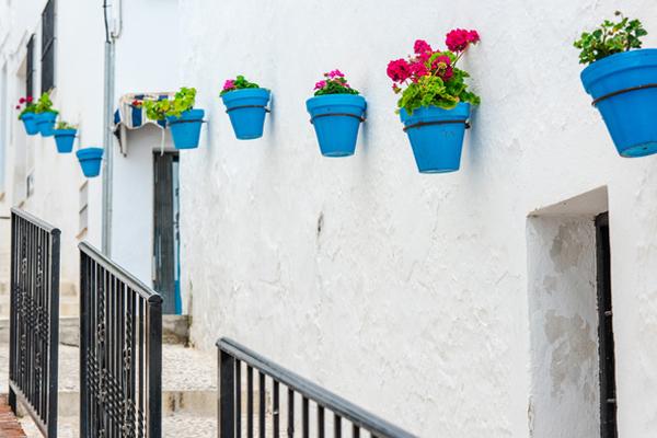 スペイン・ミハスの街 花